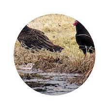 """Turkey Vulture 3.5"""" Button"""