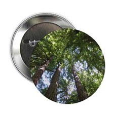 "up into treetops 2.25"" Button"