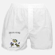 Sunfish Capital, Minnesota Boxer Shorts