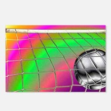 Rainbow Volleyball  Net Postcards (Package of 8)