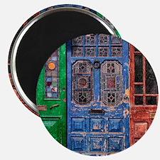 Old Doors Magnet