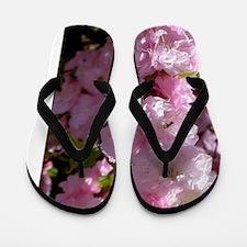 pink-91084 Flip Flops