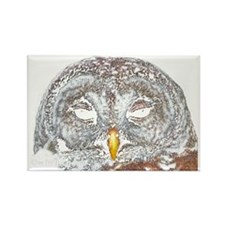 Mr Owl (Use only for black shirts Rectangle Magnet