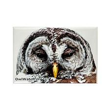 Mr_Owl Rectangle Magnet