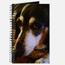 Grace: The eyes to My Soul Journal