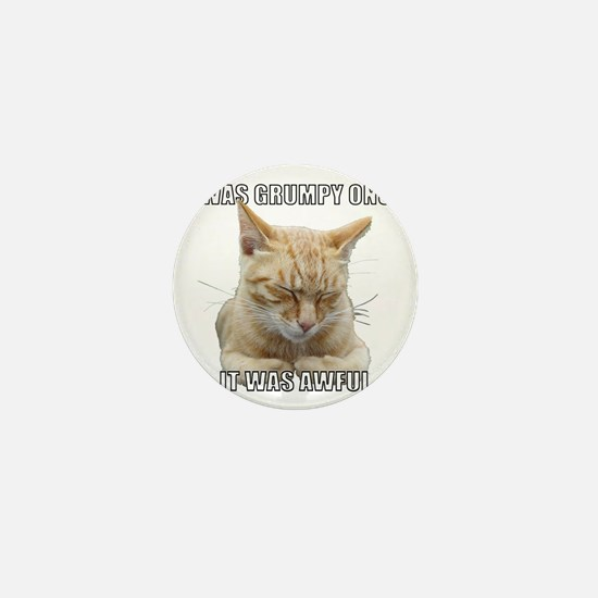 Zen Cat - I Was Grumpy Once It Was Awf Mini Button