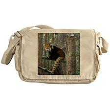 Xia Messenger Bag