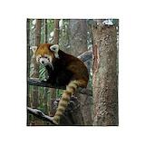 Red panda Blankets