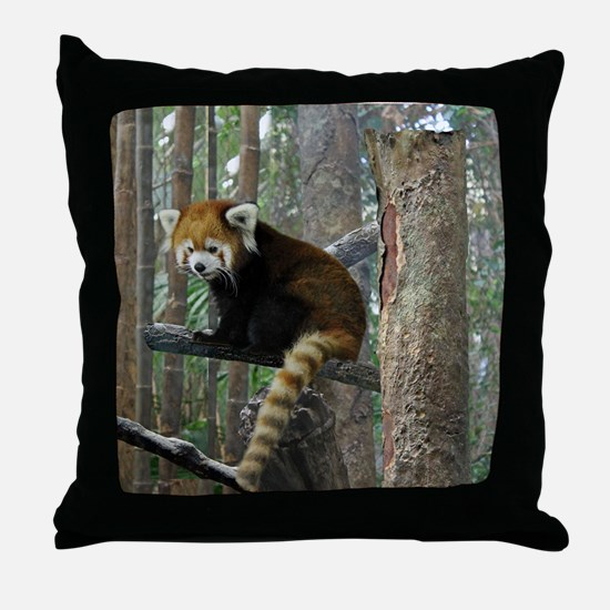 Xia Throw Pillow