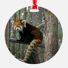 Xia Ornament