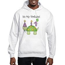 Turtle 1st Birthday Hoodie