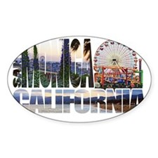 Santa Monica Logo pier beach flora Decal