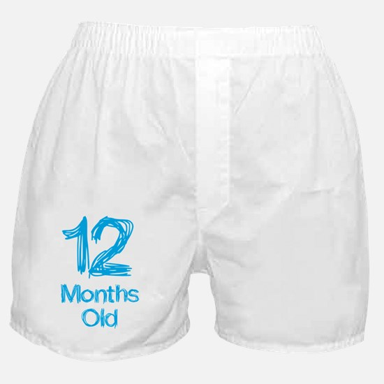 12 Months Old Baby Milestones Boxer Shorts