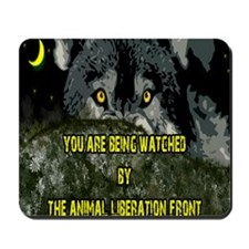 You are being watched! Mousepad