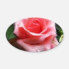 Pink Rose with Dew Oval Car Magnet