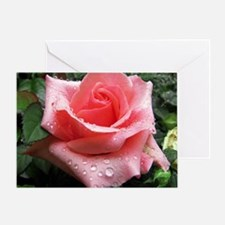 Pink Rose with Dew Greeting Card