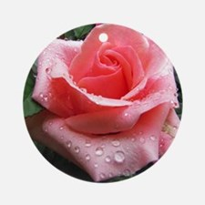 Pink Rose with Dew Round Ornament