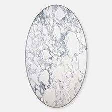 Marble Area Rug 2 Decal