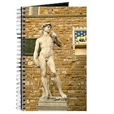Davide Journal
