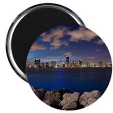 Miami Night Skyline Magnet