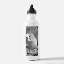 Budgie Water Bottle
