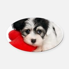 Lover Valentine Havanese Puppy Oval Car Magnet