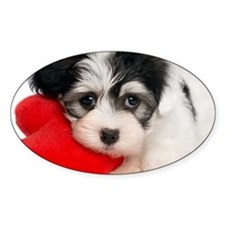 Lover Valentine Havanese Puppy Decal