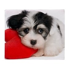 Lover Valentine Havanese Puppy Throw Blanket