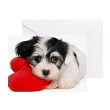 Lover Valentine Havanese Puppy Greeting Card