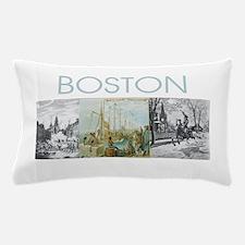 boston2tran Pillow Case