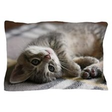 Lying kitten Pillow Case