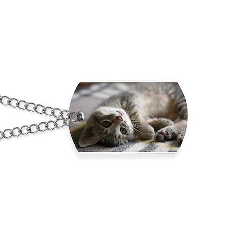 Lying kitten Dog Tags