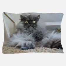 Colonel Meow surprise Pillow Case