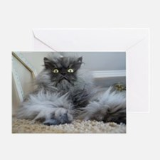 Colonel Meow surprise Greeting Card