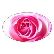 Pink Rose Decal