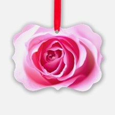 Pink Rose Ornament