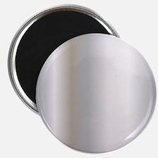 Metallic Silver Magnet