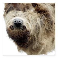 "Sloth Curtains Square Car Magnet 3"" x 3"""