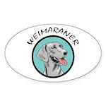 weimaraner circle portrait Oval Sticker