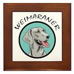 weimaraner circle portrait Framed Tile