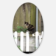 Kat on a Kenner Fence Decal