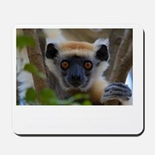 Golden Crowned Lemur Face Mousepad