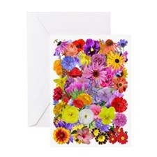 Eileens multifloral A3 Greeting Card