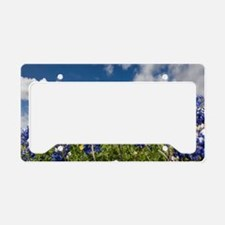 Texas Bluebonnets - 4217 License Plate Holder
