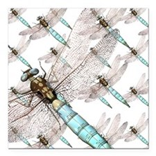 "Dragonfly Air Force on W Square Car Magnet 3"" x 3"""