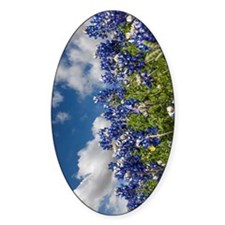 Texas Bluebonnets - 4217v Decal