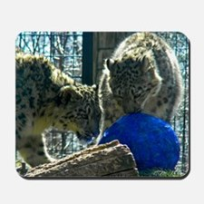 Snow Leopards and Egg Mousepad