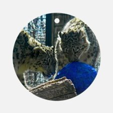 Snow Leopards and Egg Round Ornament