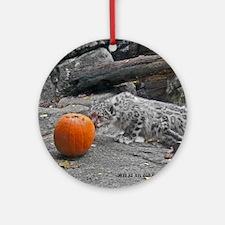 Snow Leopard and Pumpkin Round Ornament