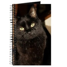 Black Cat named Cosmo Journal